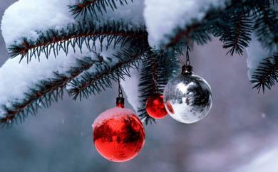 Promoción de Navidad especial para los Amigos del Museo Reina Sofía/2014